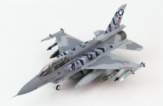 F-16D Polish Air Force, 6.eskadra lotnicza (Best Flying Unit), NATO Tiger Meet
